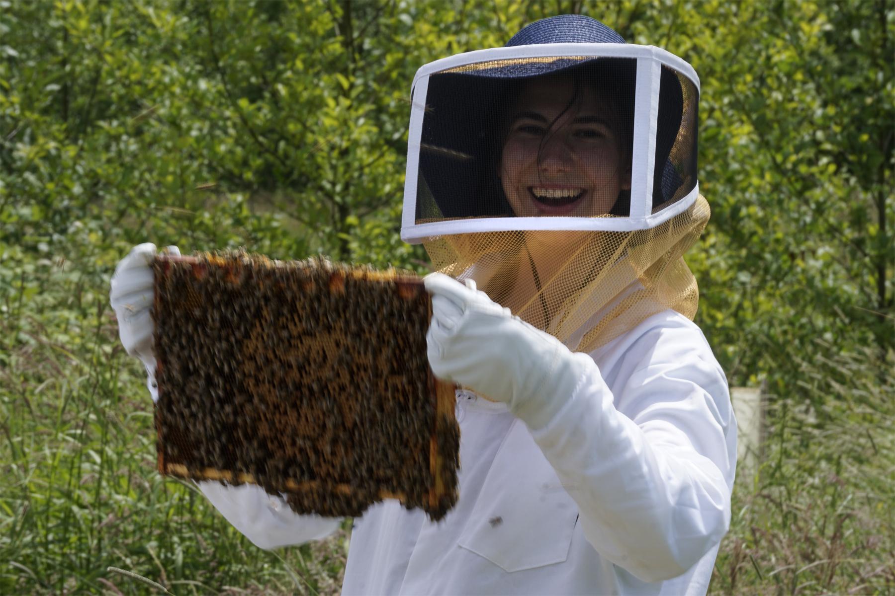 bee post 3